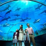 Aquaria & Zoo Terkenal Di Malaysia